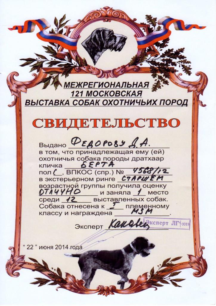 121-я Московская областная выставка охотничьих собак_Берта