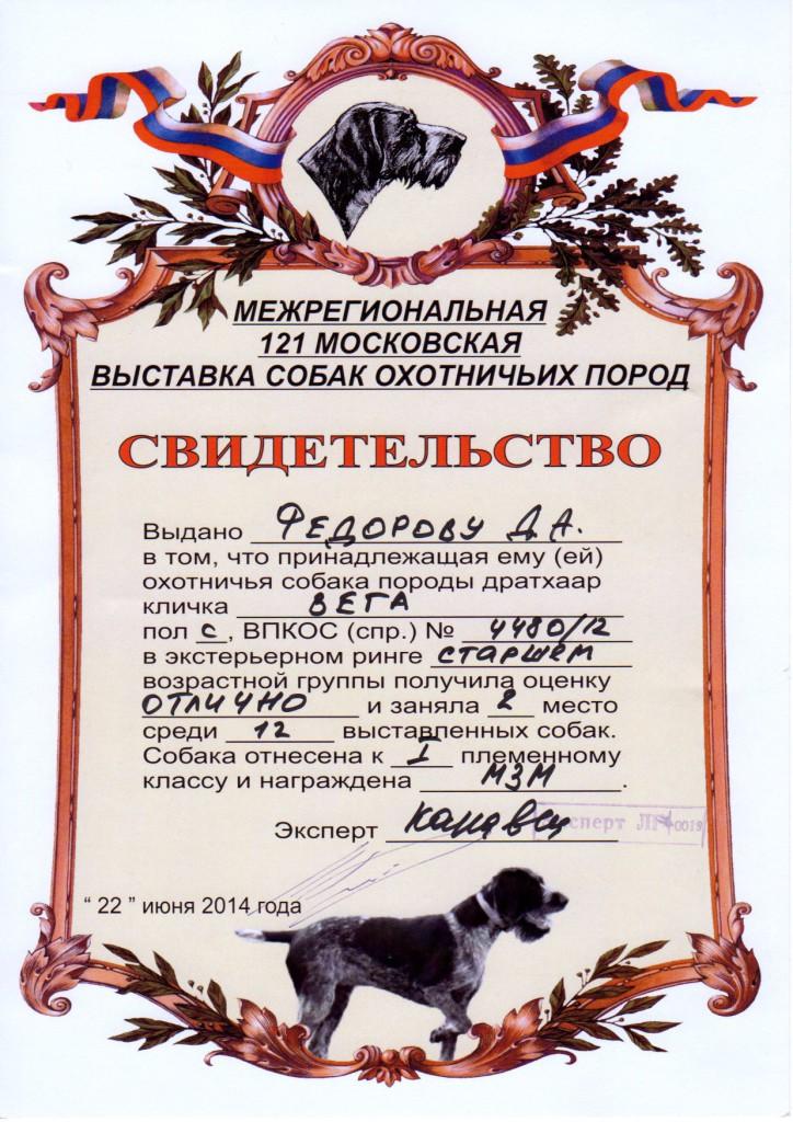 121-я Московская областная выставка охотничьих собак_Вега