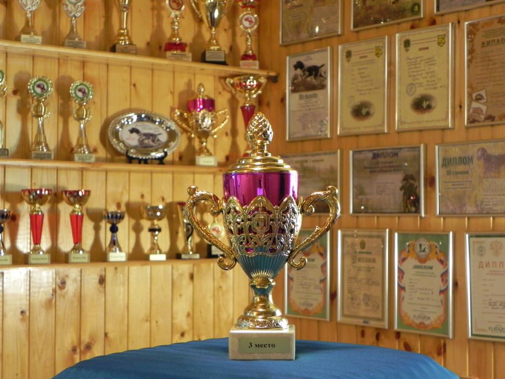 2015.05.23.   Берта - III место                                      Сертификатные (САСТ) Состязания по болотно-луговой и полевой дичи